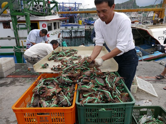 Wanli Crab's meat and roe are both extremely rich in sea flavor